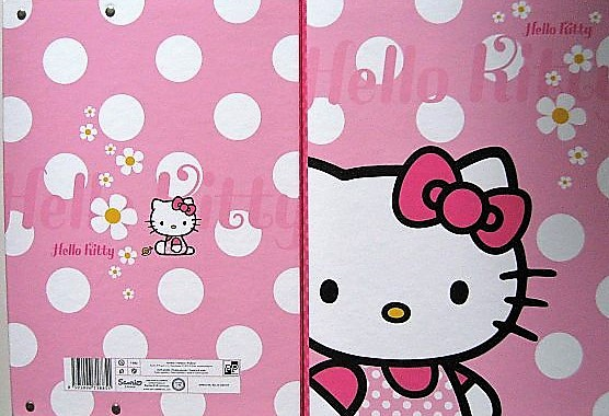 Heftbox A4 HELLO KITTY